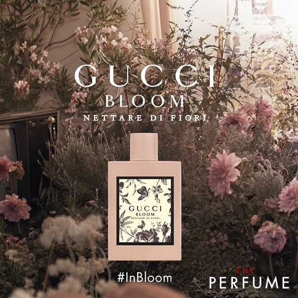 nuoc-ho-gucci-bloom-nettare-di-fiori-50ml