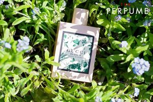 Nước hoa Gucci Bloom xanh